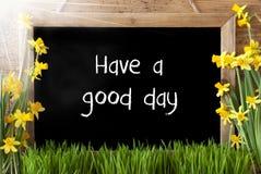 Pogodny wiosna narcyz, Chalkboard, tekst Dobrego czas Zdjęcia Royalty Free