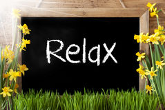 Pogodny wiosna narcyz, Chalkboard, tekst Relaksuje Fotografia Royalty Free