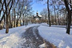 Pogodny zima dzień Zdjęcie Royalty Free