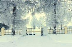 Pogodny zima krajobraz Zdjęcie Stock