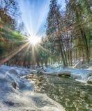 Pogodny zima ranek na wąż rzece Fotografia Stock