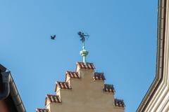 Pogodowy vane celuje z latającym ptakiem z łękiem i strzała przy Fotografia Stock