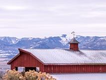 Pogodowy Vane Na Czerwonej stajni w zimie Obraz Royalty Free