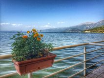Pogradec Albania stock photography