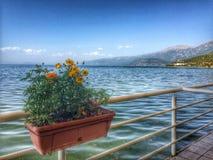 Pogradec Albanien Stockfotografie