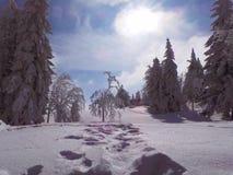 Pohorje, Slovenië, voetafdrukken in sneeuw royalty-vrije stock afbeelding