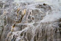Pohutu喷泉 库存照片