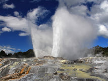 Pohutu Geyser Royalty Free Stock Images