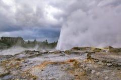 Pohutu Geyser, Rotorua, New Zealand, Royalty Free Stock Image