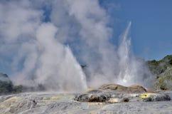 Pohutu Geyser, nya Zeland Royaltyfria Bilder
