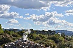 Pohutu Geyser, nya Zeland Arkivbild