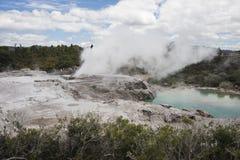 Pohutu Geyser som bakifrån ses Arkivfoto