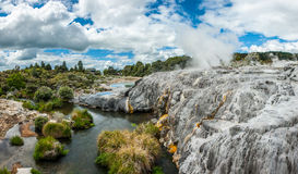 Pohutu and Prince of Wales geysers Royalty Free Stock Photos
