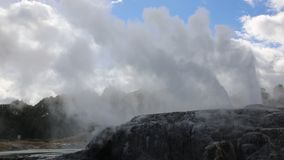 Pohutu and Te Tohu geyser stock video footage
