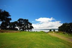 Pohutukawa trees at Orere Point Royalty Free Stock Image