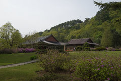 Pohyonsatempel, DPRK (Noord-Korea) Stock Fotografie