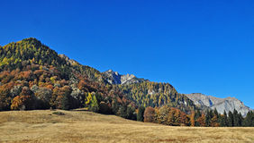 Poiana Stanii. Bucegi mountains, view from the Poiana Stanii plateau stock images