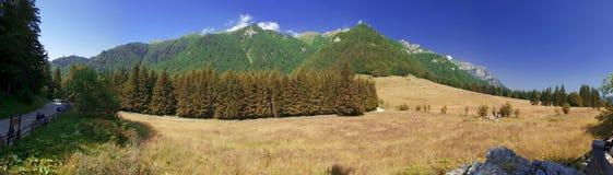 Poiana Stanii panorama Royalty Free Stock Image