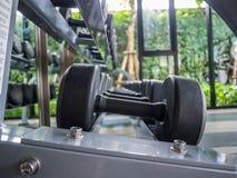 Poids, beaucoup haltère noire dans la chambre de forme physique et x28 ; gymnase, forme physique, equipment& x29 ; Photo stock