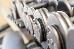 Poids d'haltère d'équipement d'exercice de forme physique Photos stock