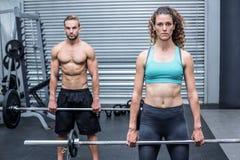 Poids de levage de couples musculaires ensemble Photographie stock libre de droits