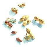 Poignée d'arachides illustration de vecteur