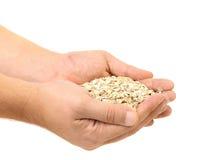 Poignée de flocons de farine d'avoine. image stock