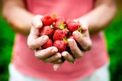 Poignée de fraises Images libres de droits