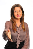 Poignée de main bienvenue Image stock