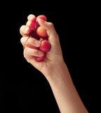 Poignée de merises dans une main Image libre de droits