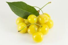 Poignée de merises jaunes Images libres de droits