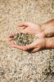 Poignée de pierres dans des mains Photo stock