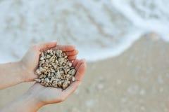 Poignée de pierres de mer Photos stock