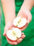 Poignée de pommes Femme tenant des pommes dans des mains Images libres de droits