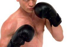 Poinçon déterminé de boxeur clips vidéos