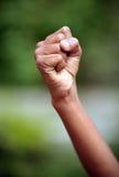 Poing de pouvoir Images libres de droits