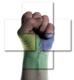 Poing de pouvoir d'isolement Image libre de droits