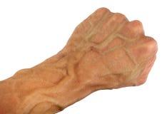 Poing et poignet humains avec la veine gonflée, d'isolement Images libres de droits