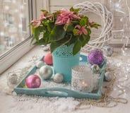 Poinsétia na janela na véspera do Natal & do x28; produtos de Imagens de Stock Royalty Free