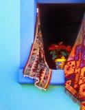 Poinsetta im geöffneten Fenster Stockfotografie
