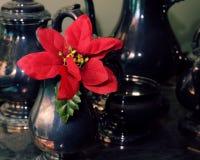 Poinsettia και ασήμι στοκ εικόνες