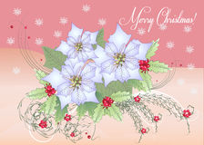 Poinsettia и ягода карточки белые иллюстрация штока