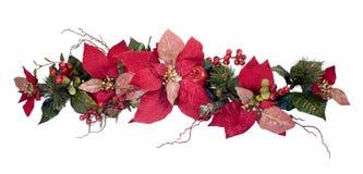 poinsettia украшения рождества стоковая фотография