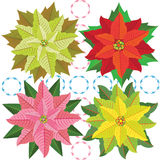 poinsettia royalty illustrazione gratis