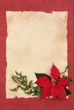 Poinsettia-Blumen-Grenze Lizenzfreies Stockfoto
