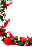 Poinsettia Border Stock Photo