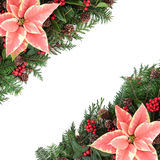 Poinsettia Border Royalty Free Stock Image
