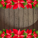 Poinsettia borders Royalty Free Stock Photo