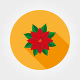 Poinsettia. Christmas Star vector icon. Poinsettia. Christmas Star. Icon for web and mobile application. Vector illustration on a button with a long shadow. Flat Stock Images