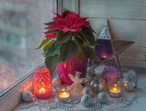 Poinsettia dans la fenêtre à la veille du producti de la masse de Noël image stock